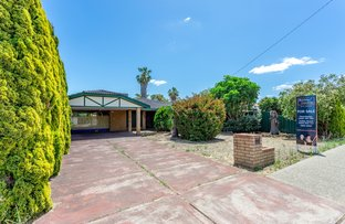 Picture of 126 Hale Road, Forrestfield WA 6058