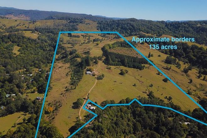 Picture of 537 Tuntable Creek Road, TUNTABLE CREEK NSW 2480