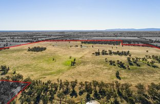 Picture of 54 Silo Road, Young NSW 2594