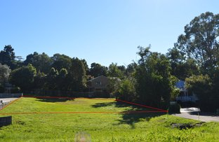 Picture of 72B MAPLE STREET, Maleny QLD 4552