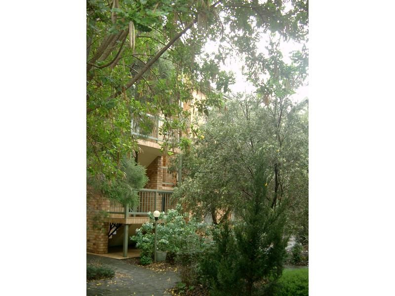 17/22 Cambridge Street, North Adelaide SA 5006, Image 0