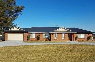 Picture of 5 Senti Road, Leeton NSW 2705