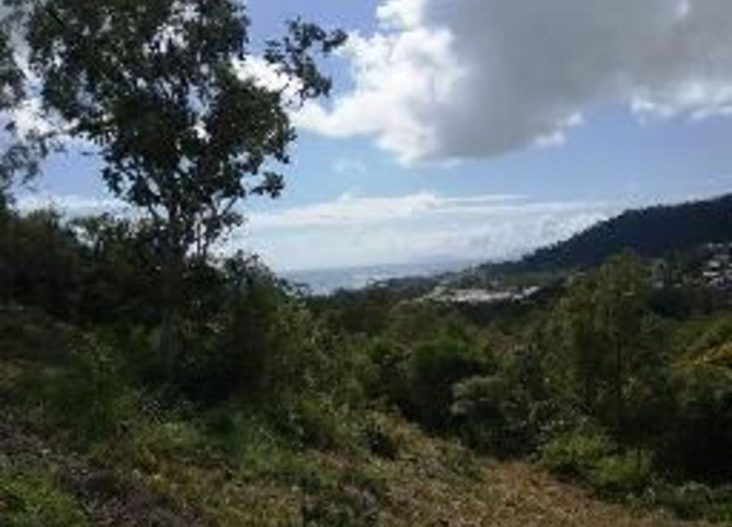 Lot 1 Parkwood Terrace, Cannonvale QLD 4802, Image 1