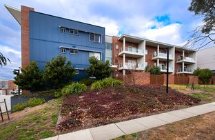 Picture of 55/136 Thynne Street, Bruce ACT 2617