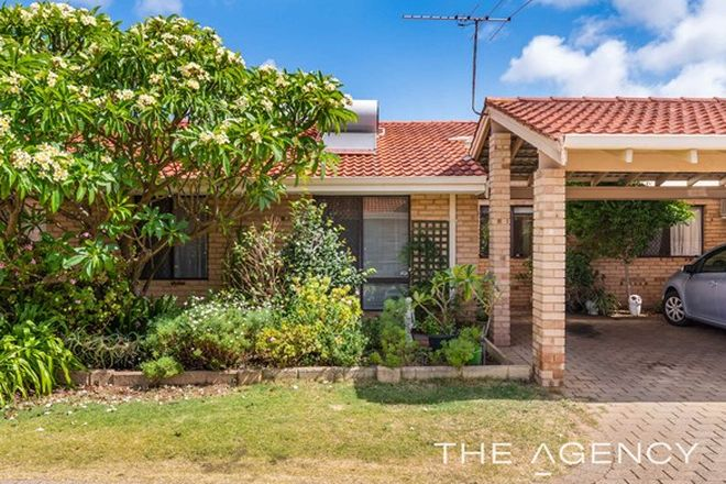 Picture of 6/7 Cottrill Street, MYAREE WA 6154