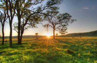 Picture of Lot 5 Hanrahan Road, Drayton QLD 4350