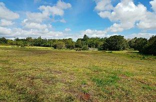 Picture of Lot 5/Lorensen Close, Malanda QLD 4885