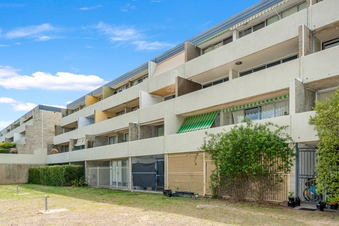 Picture of 13/4 Wilkins Street, MAWSON ACT 2607