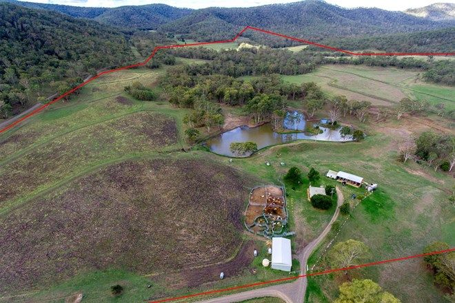 Picture of 107 Hendrie Road, PILTON QLD 4361