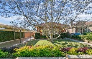 Picture of 18 Halley Avenue, Bexley NSW 2207