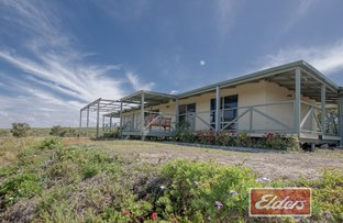 Picture of 113 Native Dog Beach Road, Bremer Bay WA 6338