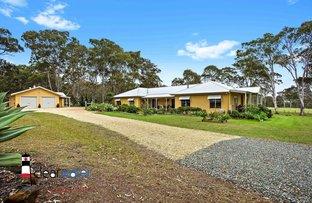 Picture of 36 Lancaster St, Bergalia NSW 2537