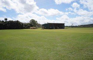 Picture of 735 Bilwon Road, Biboohra QLD 4880