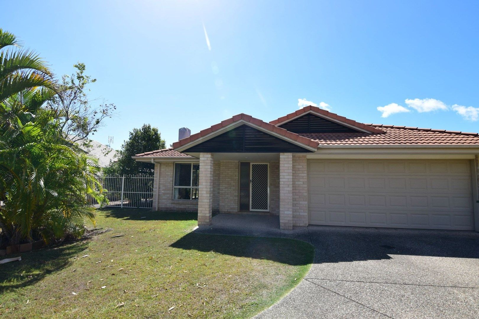 12 Whitewood Court, Mountain Creek QLD 4557, Image 0