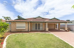 Picture of 13 Ploughshare Place, South Lake WA 6164