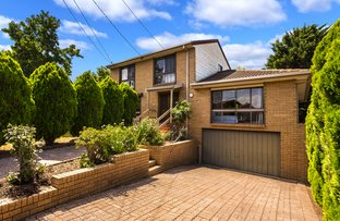Picture of 14 Christina Ct, Avondale Heights VIC 3034