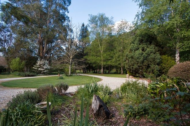 Picture of 3130 Benambra-Corryong Road, NARIEL VALLEY VIC 3707