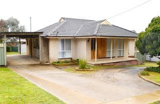 Picture of 23 Quandong Avenue, Tumut NSW 2720