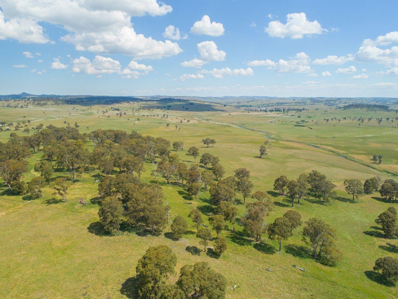 Tara East, 431 Wards Mistake Road, Guyra NSW 2365, Image 0