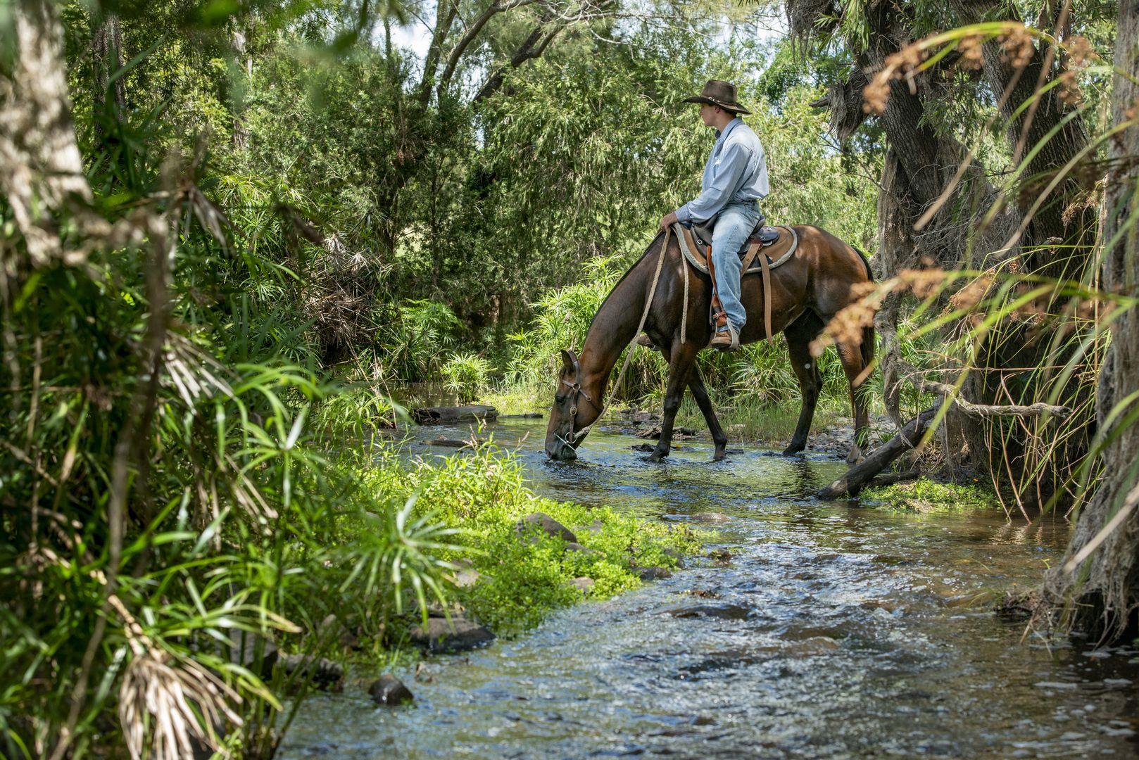 'Lagoona' Reid Road, Widgee QLD 4570, Image 1