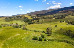 Picture of 756 Hereford Hall Road, Braidwood NSW 2622