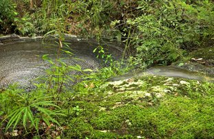 140 Niclins Road, Mangrove Mountain NSW 2250