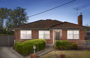 Picture of 7 Jelf Court, Fawkner VIC 3060