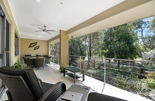 Picture of 3 Bunker Court, Peregian Springs QLD 4573