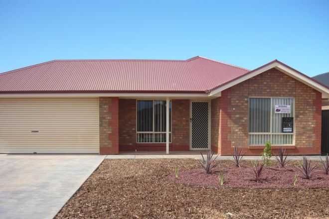 Picture of 7 Jensen Avenue, WHYALLA JENKINS SA 5609