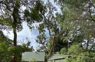 Picture of 4 Dunkley, Molloy Island WA 6290