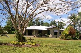 Picture of 269 Eubenangee Road, Eubenangee QLD 4860