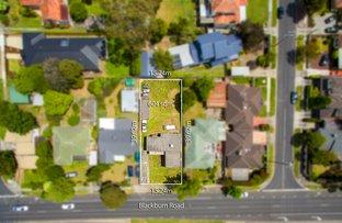 194 Blackburn Road, Blackburn South VIC 3130