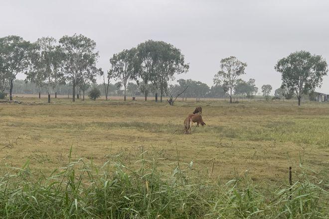 Picture of 330 Hodel Road, GIRU QLD 4809