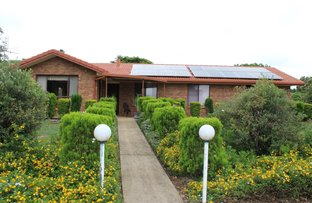 Picture of 2 Tarong Drive, Kingaroy QLD 4610