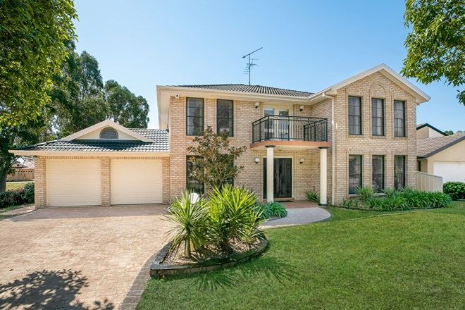 Picture of 8 Banksia Road, MOUNT ANNAN NSW 2567
