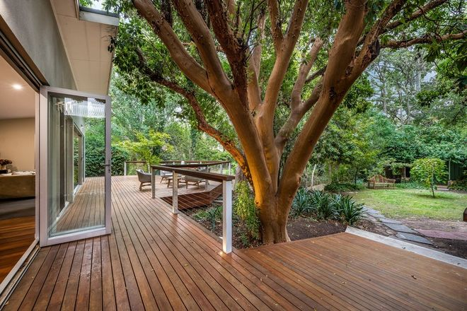 Picture of 18 Leonard Terrace, TORRENS PARK SA 5062