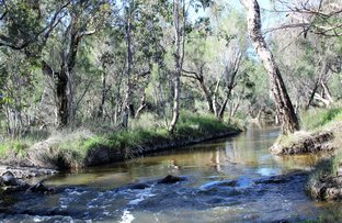 Picture of Lot 2784 Laura Road, Wanerie WA 6503