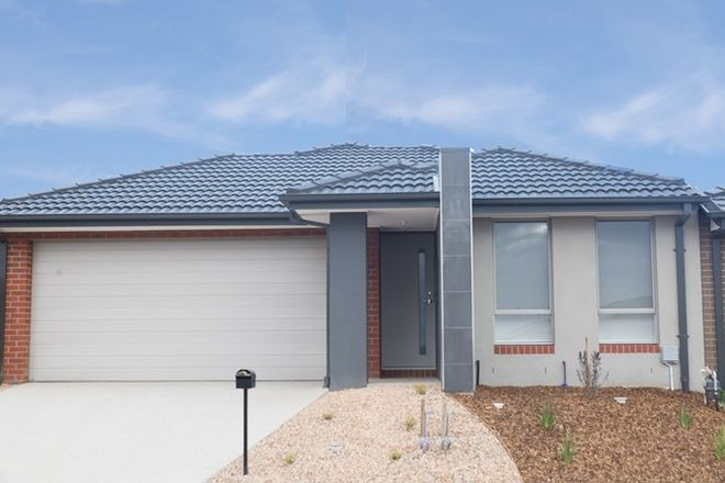 Picture of 16 Grain Road, WYNDHAM VALE VIC 3024