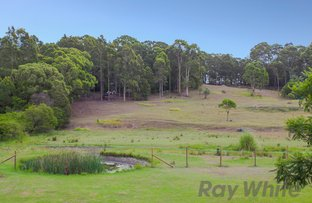 Picture of 187 Boundary Road, Wallsend NSW 2287