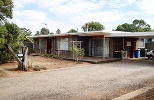 Picture of 51 Pine Street, Numurkah VIC 3636