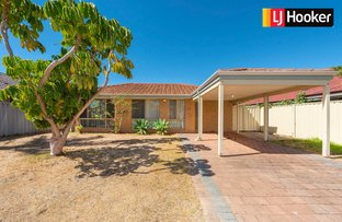 Picture of 11 Pallarup Grove, Waikiki WA 6169