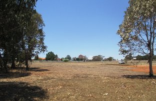 Picture of Lot 10 Oakland Lane, Inverell NSW 2360