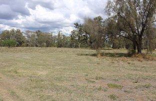 Picture of 8 Bundaloey Road, Moree NSW 2400