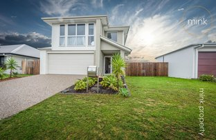 44 Petrel Crescent, Brightwater, Mountain Creek QLD 4557