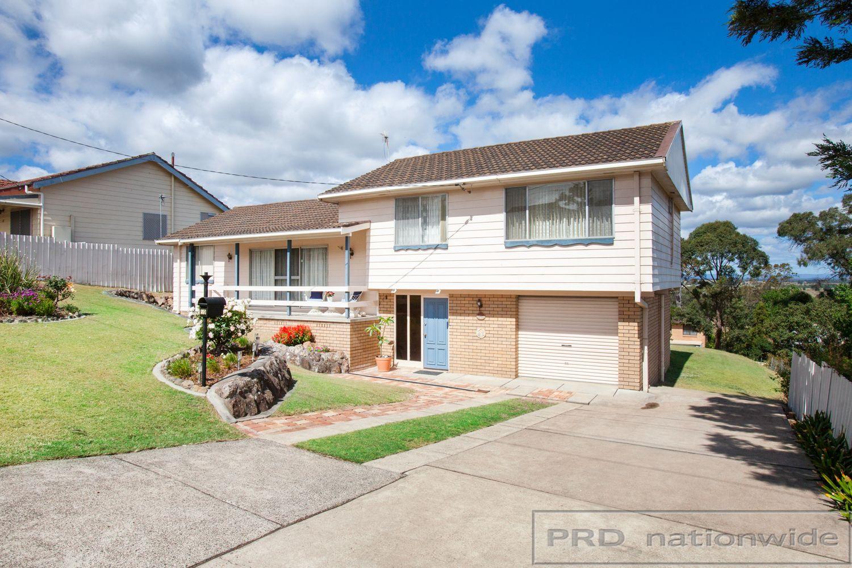 59 Flinders Street, East Maitland NSW 2323, Image 1
