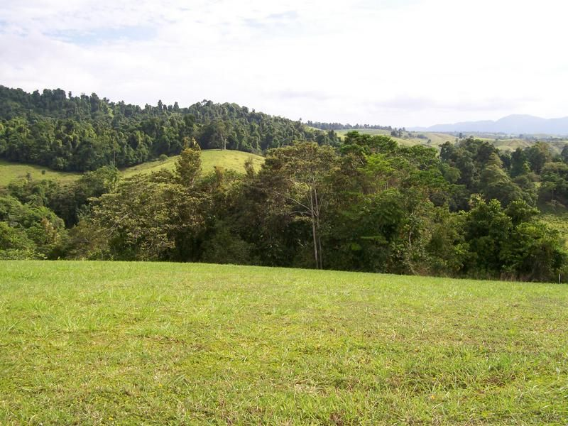 Lot 6 Rainforest Falls Road, Coorumba QLD 4860, Image 2