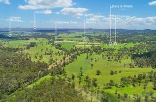 269 Cainbable Creek Road, Nindooinbah QLD 4285