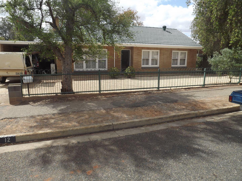 12 Grenache Avenue, Berri SA 5343, Image 1