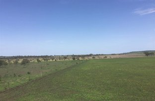 Picture of LOT 3116 Scrubby Road, Pittsworth QLD 4356