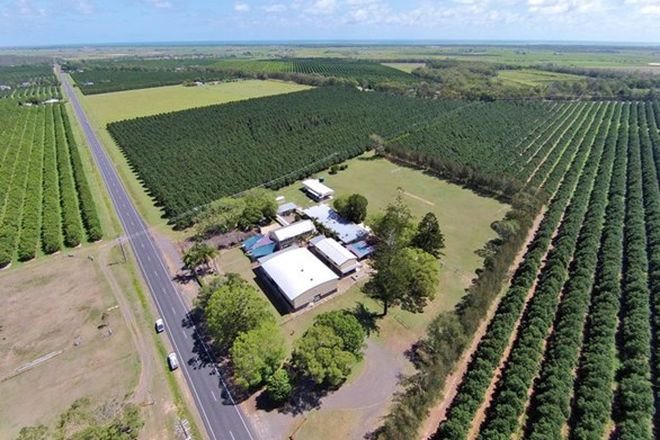 Picture of 669 Moore Park Road, WELCOME CREEK QLD 4670